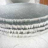Âme en nid d'abeilles en aluminium pour la partition de toilette (HR638)