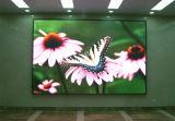 Tablilla de anuncios publicitaria a todo color de interior de LED P3