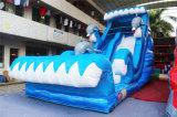 Trasparenza 2017 di acqua gonfiabile del delfino di divertimento per il partito dei bambini