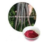 10:1 Negro del Extracto del Rábano, Antocianina del 25%, Antocianidinas del 25%
