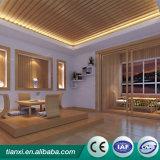 Het creatieve Licht van het Plafond van het Metaal van Producten Frame Opgeschorte Duurzaam in Gebruik
