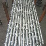 Heißes Verkaufs-Baugerüst-System Cuplock