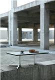 강화 유리 (CT-V5)를 가진 나무로 되는 커피용 탁자