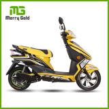 熱い販売の長距離によって実行される電気移動性のスクーター1000W 60V