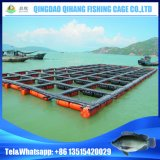 Grand réservoir de poissons d'aquaculture pour la pisciculture