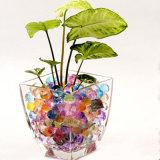 Großhandelsmassenkristallschmutz für Pflanzenwasser bördelt Gel-Kugel für Hauptdekoration