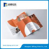 Vier Farbe Tri-Faltblatt Broschüre mit Laminierung