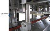 Línea automática para producir el líquido del lavado con servicio de ultramar
