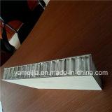 comitati di alluminio spessi del favo di 20mm per la decorazione dell'elevatore