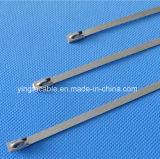 304 316 Ss Banden van de Bal van het Staal van het Slot van het Roestvrij staal