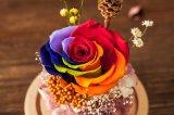 Fiore naturale Handmade per la decorazione di natale del ricordo