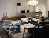 Italienischer moderner Möbel-Wohnzimmer-Kaffeetisch-Tee-Tisch (T-96)