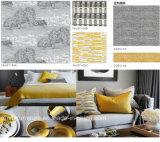 Tela de equipamiento caliente del sofá del diseño moderno de la venta