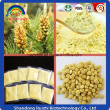Hot Selling Powder Cell Wall Broken Pine Pollen Powder Bulk Pine Pollen Poudre de pollen de pin