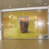 Visione unidirezionale per la pellicola perforata adesiva del vinile degli autoadesivi della finestra