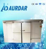 Porte coulissante d'entreposage au froid de pièce automatique de congélateur pour la nourriture