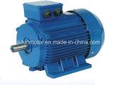 Ie2 Ie3 고능률 3 단계 감응작용 AC 전동기 Ye3-160m2-8-5.5kw