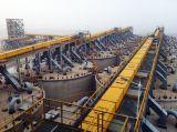 De PanTransportband van het Cement van de Industrie van Sdbf van M450-250 voor Jakobsladder