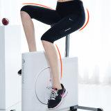 Matériel se pliant de gymnastique de résistance magnétique de vélo d'exercice de M-Cadre