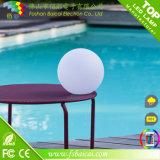 防水カラー変更LEDの球のプール