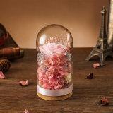 Fiore naturale Handmade di 100% Rosa per il regalo del biglietto di S. Valentino