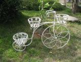 3개의 층 고전적인 자전거 재배자 홀더