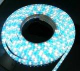 110V делают свет водостотьким прокладки SMD5050 84LEDs RGBW СИД