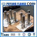 """Lwnrf 300# 3/4 """" LG215mm F316/316L (PY0044)"""