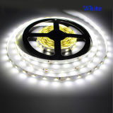 SMD 5630 (5730) 5m DC12V LED Strip Light avec alimentation