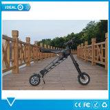 Motorino elettrico pieghevole del pedale del motorino di alta qualità 36V 350W