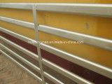 Квадратное поголовье панелей/овец козочки пробки обшивает панелями горячее сбывание (XMM-SP7)