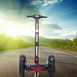 Vespa derecha eléctrica de las ruedas elegantes del balance dos con EMC/Ce