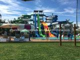 재미있은 공원 섬유유리 물 미끄럼 (ZC/DX/BS-02)