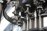 máquina de embotellado plástica de la bebida carbónica automática del gas 10000bph