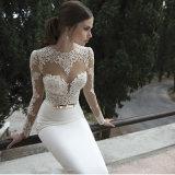 2017本の優雅なレースの鍵穴の背部長い袖の花嫁のウェディングドレス(夢100006)