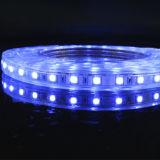 5050 LED 관제사를 가진 RGB R/G/B/W/Y/Ww 변하기 쉬워 LED 지구 50m/Roll