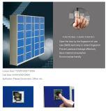 Armario de almacenaje seguro del lavadero del metal de la huella digital