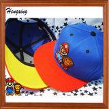 Panel-Schutzkappen-flache Baseballmütze des Wolle-Hysteresen-Hut-6