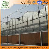 Invernaderos abiertos de la PC Invernadero usado del invernadero del equipo agrícola / policarbonato del tablero de la PC