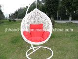 PE 등나무 그네 의자, 거는 등나무 계란 의자 등나무 그네