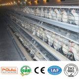 La couche automatique met en cage le système de ramassage d'oeufs de Chambre de poulet de système