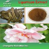 Extrait naturel d'Angelicae Sinensis de base de 100% (10 : Ligustilide 1/1%)