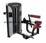 Bodybuilding Jy-J40008/máquina de la fuerza del uso/equipo comercial de la gimnasia/una parte posterior más inferior