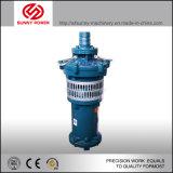 구조와 기복 명세 2kw-100kw를 위한 잠수할 수 있는 펌프