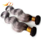 ライト2調子のOmbreカラー毛のベトナムの毛のよこ糸