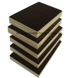 Noir / Marron / Anti-Slip Film face au contreplaqué avec peuplier / Hardwood Core for Construction