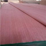 Recon Veneer/EV Veneer with Keruing Color and White Color