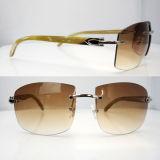 Vidros naturais Carter dos óculos de sol do chifre do búfalo retro