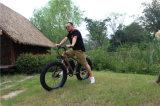 Quadrato grasso della bici della bici del mozzo della bici grassa grassa del carbonio