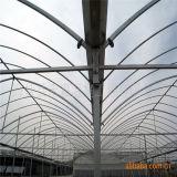 질 Anti-Fogging 플레스틱 필름 덮개를 가진 농업 다중 경간 온실을 판매하는 공장